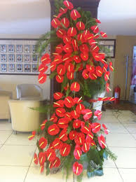 anthuriums on a stand