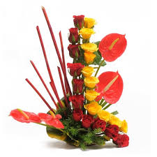 24 red yellow in a line with 4 anthurium basket