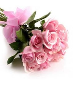 12 Pink roses Hand Tied