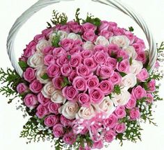 70 pink roses with white heart in centre