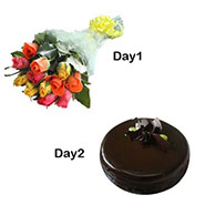 Day-1 12 mix roses Day-2 1/2 kg Chocolate Cake